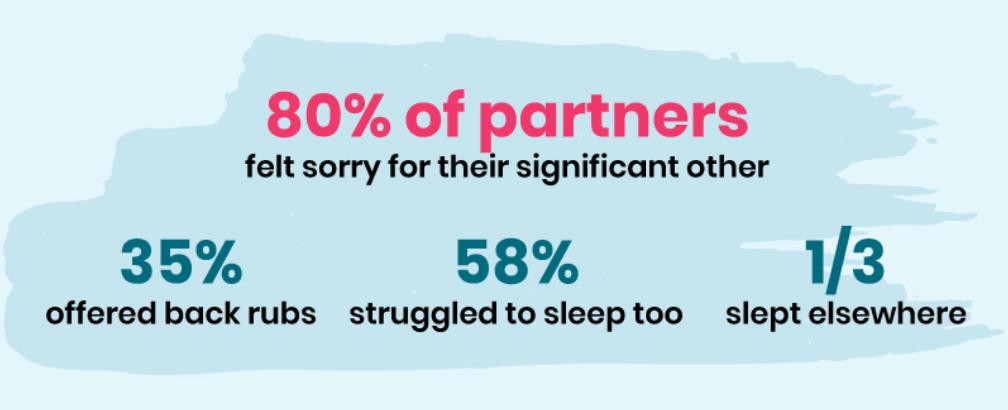 Pregnancy Partner Infographic 2